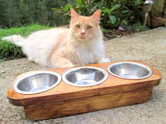 Pet Bowl - Three stainless steel Pint Bowls - Hand made Raised Cat/ Kitten Feeder - Elevated Feline Feeder - Gift - Baby Cats, Cats And Kittens, Baby Kitty, Kitty Cats, Cat Feeding Station, Metal Stamping Supplies, Cat Feeder, Cattery, Pet Bowls