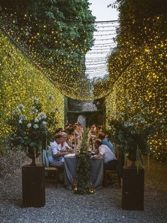 Have a mental image or a solid dream, this is how you turn that into a full-blown wedding day! Tropical Wedding Reception, Wedding Reception Layout, Wedding Seating, Wedding Chuppah, Wedding Canopy, Wedding Ceremony, Wedding Venues, Wedding Ideas, White Floral Centerpieces