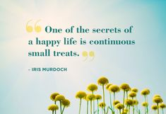 Happiness in the small things/experiences.