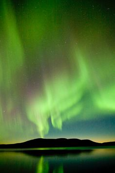 °Aurora Borealis ~ Northern Lights by Visit Finland Beautiful Sky, Beautiful Landscapes, Beautiful Places, Northen Lights, Lights Fantastic, See The Northern Lights, Fjord, To Infinity And Beyond, Natural Phenomena