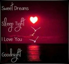 Goodnight I Love You Quotes Endearing Good Night My Love Sweet Dream I Love You  Sayings  Pinterest