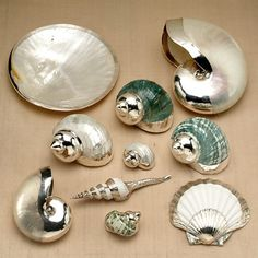 Seashells Part-Silvered - all you need is the conducting laquer and a brush, then take the shells to your jeweller for silvering. especially nice using polished shells! Seashell Painting, Seashell Art, Seashell Crafts, Beach Crafts, Diy And Crafts, Arts And Crafts, Seashell Projects, Seashell Ornaments, Snowman Ornaments