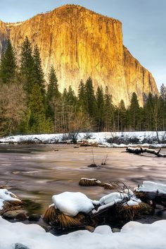 El Capitan in the Afternoon Light