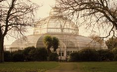 Sefton Park Palm House (Liverpool), simply incredible