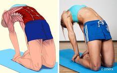 18 Illustrations qui montrent clairement quels muscles tu es en train d'étirer