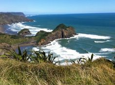 Pic of O'Neills and Bethells (facing South)