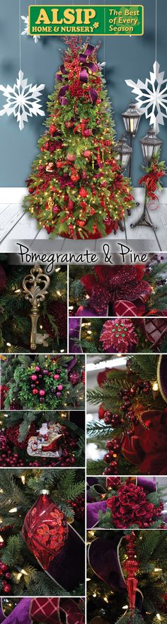 Pomegranate & Pine 2