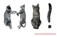 There is now a font made entirely of cats!  (Katie- should I use this for my resume?)