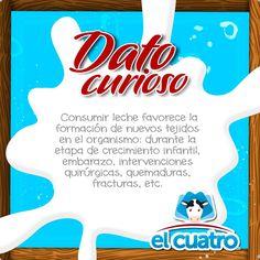 #DatoCurioso Dato curioso #lecheelcuatro #delagranjaasucasa