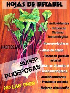 Hojas de betabel para jugos verdes