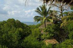 treehouse hotel in Tanzania