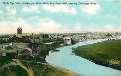 Cheboygan Michigan MI 1907 Town Cheboygan River Antique Vintage Postcard