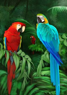 Misiones Digital Painting Fauna By: Iván Pawluk