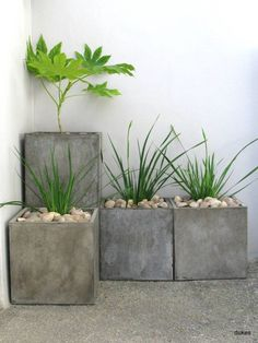 Garden Landscaping Decking Amazing DIY Concrete Garden Boxes Ideas DIY flower pots can make your ornamental plants more beautiful. You are also free to create flower pots with whatever model you want. Some plants in Concrete Plant Pots, Concrete Garden, Diy Concrete, Cement Planters, Wall Planters, Outdoor Planters, Planter Boxes, Stone Planters, Cinderblock Planter