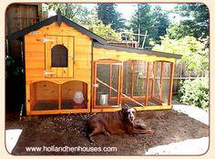 chicken coop/hen house