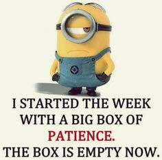 Funny Minions Quotes 469