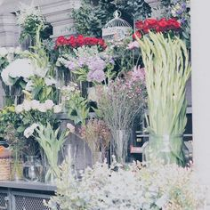 Beautiful florist outside our hotel in Manchester this weekend. Flowers just make me happy