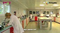 research-and-development Research And Development