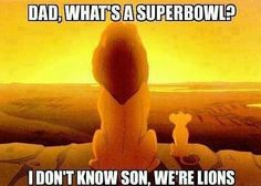 Awww! The Lions are my second favorite team and I am always rooting for them, but this made me laugh really hard.