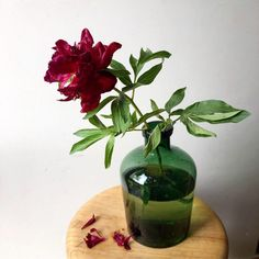 If I'm ever to fall apart, may I be granted the exquisite grace of falling apart with the dignity of a peony. Wedding Flower Inspiration, Wedding Flowers, Falling Apart, Peony, Glass Vase, Dreams, Weddings, Learning, Wedding