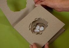 New Zealand's Design Oscars - the packaging design category..from Fancy NZ Design Blog