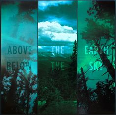 If These Trees Could Talk - Above the Earth Below the Sky