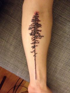 Tree tattoo. Pine trees.