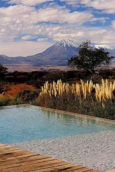 Region de Acatama, Cordillera de los Andes. Vista al volcan chileno Licancabur.