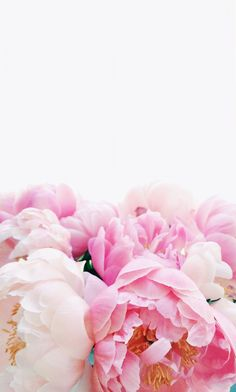 Wallpaperpinkflowers wallpapers pinterest wallpaper flower shades of pink mightylinksfo