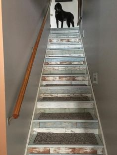 5 Best Ideas: Narrow Basement Remodel old basement.Basement Remodeling Lighting old basement remodel. Old Basement, Basement Stairs, Basement Ideas, Basement Storage, Basement Renovations, Home Remodeling, Living Room Remodel, Living Room Decor, Living Rooms