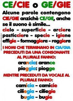Parole terminanti in ce/cie, ge/gie Italian Grammar, Italian Vocabulary, Italian Phrases, Italian Language, Korean Language, Spanish Language, Italian Lessons, Montessori Math, School Worksheets