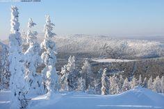 Snow And Ice, Lofoten, Winter Photography, Winter Scenes, Winter Snow, Winter Season, Natural Beauty, Skiing, Tourism