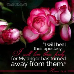 Hosea 14:4.  I will heal their apostasy, I will love them freely, for My anger has turned away from them.