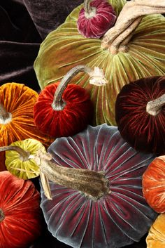 Velvet Pumpkins by Hot Skwash, beautiful fall colors. Fall Halloween, Halloween Crafts, Halloween Decorations, Velvet Pumpkins, Fabric Pumpkins, Hallowen Ideas, Happy Fall, Happy Thanksgiving, Fall Harvest