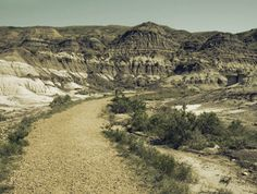 Explore the beauty of the badlands on your own along a special interpretive path near the Royal Tyrrell Museum. Monument Valley, Paths, Grand Canyon, Trail, Public, Museum, Explore, Nature, Summer