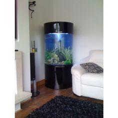 Column Cylinder Acrylic Aquarium Fish Tank 3 Colours