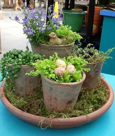 Easter Centerpiece @ Shelmerdine's Garden Centre | Floral inspiration