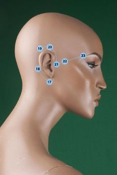 Acupressure Headache Temporal Tapping Method For Rapid Behavioral Changes (Part-II) (The first part of this article is at the address: Temporal Tapping Method For Rapid Behavioral Changes (Part I) ) As I stated in the . Natural Remedies For Arthritis, Natural Cancer Cures, Natural Headache Remedies, Natural Cures, Natural Healing, Acupressure Treatment, Acupressure Points, Eft Technique, Accupuncture