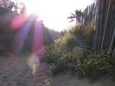 Evening light, on the beach