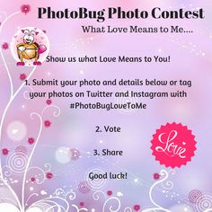 PhotoBug Photo Contest - Feb 2016 Photography Competitions, Photography Contests, What Love Means, Photo Contest, Your Photos, Instagram, Pageant Photography, Photography Challenge