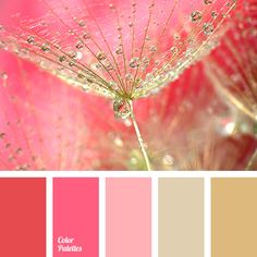 Warm shades of pink tones combined with warm golden hues will look spectacular in a kitchen. If you order a furniture set in these colors, the room will lo.