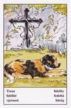 My Heart Aches, Simple Pictures, Gypsy Life, Oracle Cards, The Fool, Vintage World Maps, October 23, Contentment, Loyalty