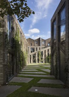 Forest Mews / Stolon Studio Ltd / London, United Kingdom