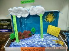 T This model of water cycle was made by my son Yash for his school project of class 4 Water Cycle Craft, Water Cycle Project, Water Cycle Activities, Indoor Activities For Kids, Science For Kids, Science Activities, School Science Projects, Classroom Projects, Stem Projects