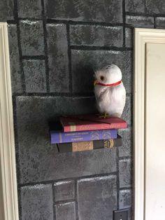 Harry Potter Room DIY - Imgur