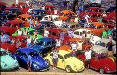 VW gathering