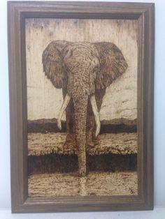 Pyrography  : Elephant By Matthew Small