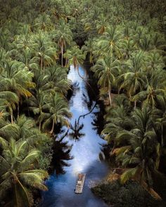 Looking for the best holiday spots? Here is Siargao Island entirely covered with palm trees    It isteardrop-shaped small island located at the northeastern coast of Mindanao is known as the Surfing Capital of the Philippines   Siargao Island Philippines  @merrwatson  #travel #blogger #beautifuldestinations #vacation #inspiration #traveltheworld #tourist #ideas #travelideas #bestplace #bestview  #wonderful_places  #worldwonder #traveltips #tips #beautifullocation #siargao #siargaoisland… Travel Around The World, Around The Worlds, Siargao Island, Mindanao, Things To Do Alone, Small Island, World's Biggest, Africa Travel, Aerial Photography