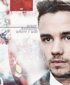 I need a little help on my Liam Payne board so comment below if you want to help! One Direction News, Members Of One Direction, While We're Young, Liam James, Best Fan, 1d And 5sos, Love You More Than, Liam Payne, Cool Bands