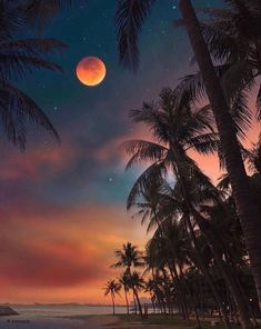 Amazing Photography, Landscape Photography, Nature Photography, Puerto Rico, Cadeau Bio, Bol D Air, Painting Wallpaper, Fine Art Photo, Night Skies